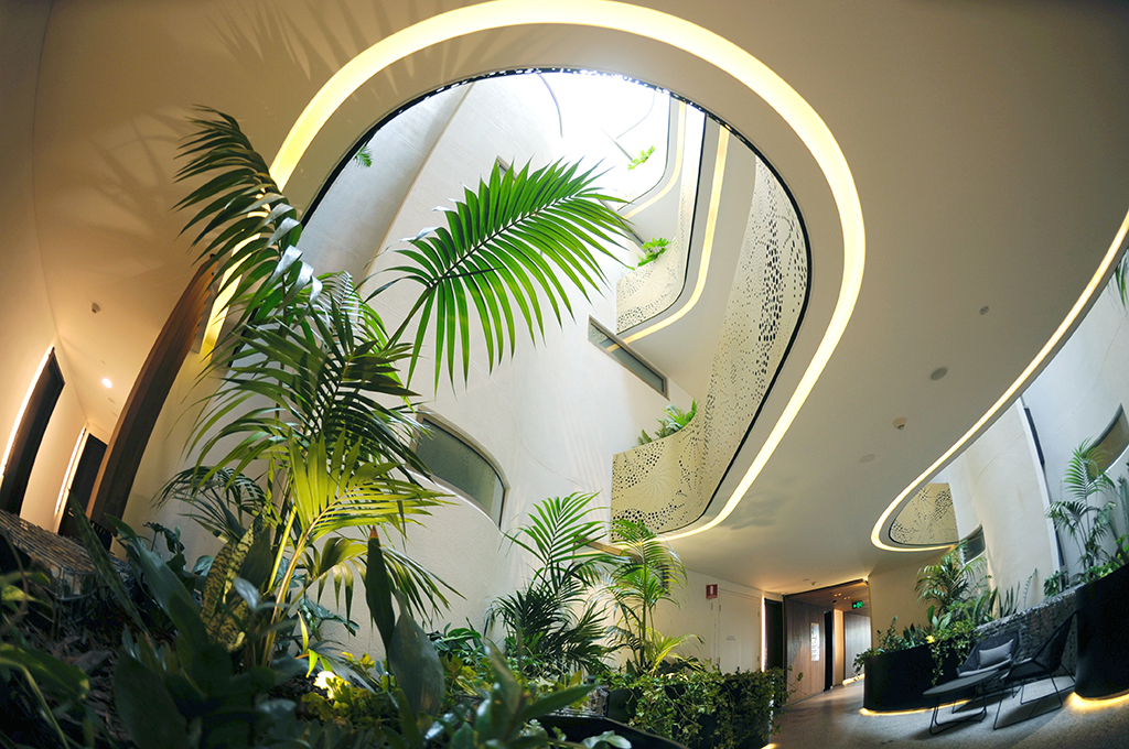 The interior planting and view through the atrium of the botanical apartment building