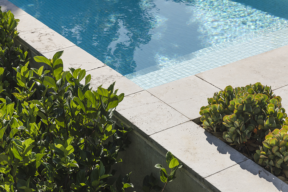 a closeup of a tiled concrete pool and the surrounding planting