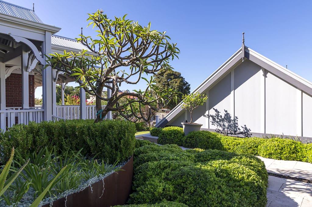 Dense hedge planting, frangipani and citrus with weathered retaining walls