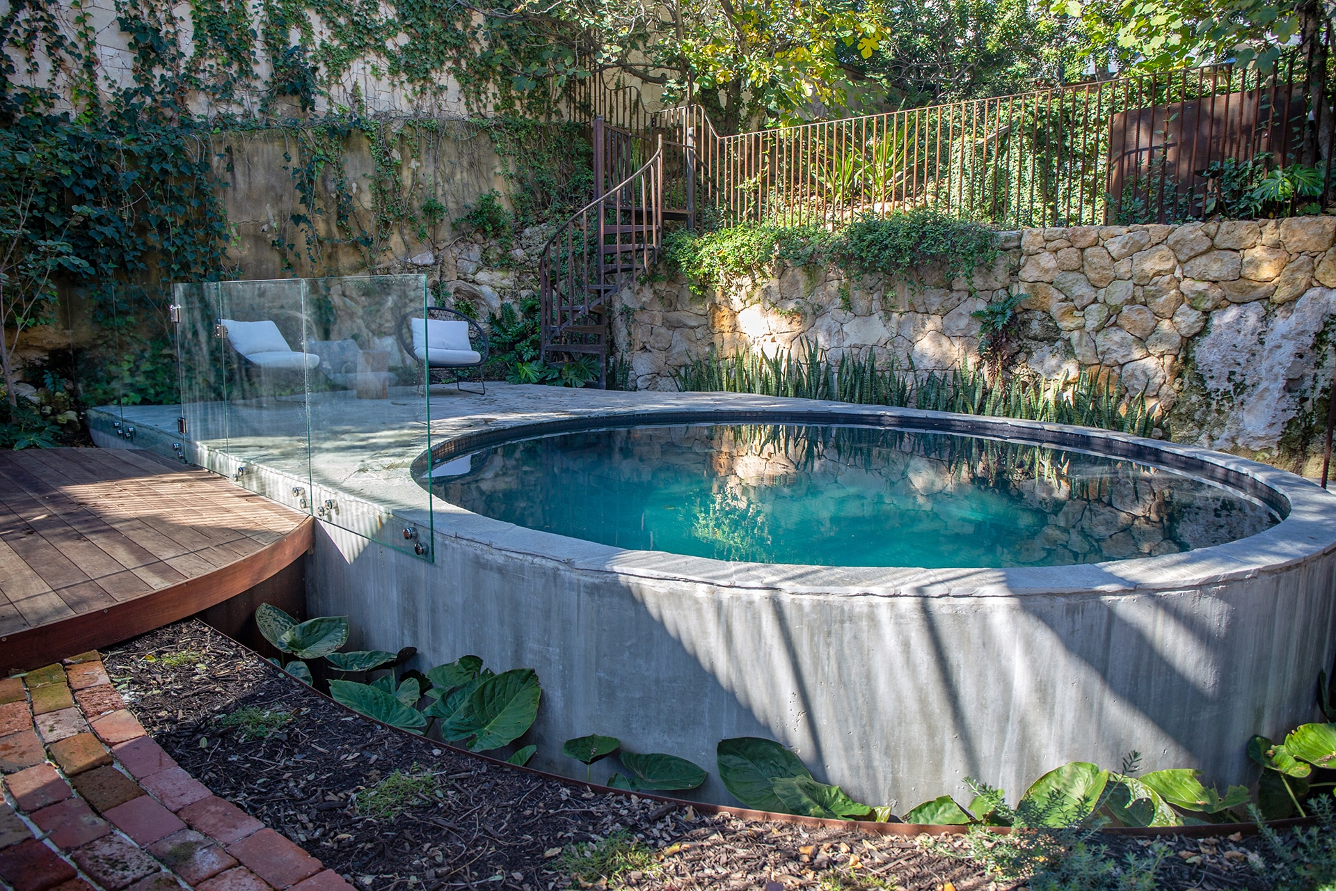 A circular moated pool with crazy paving and Alocasia planting.